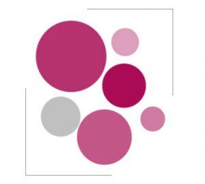 Red Visirius de clientes y proyectos